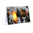 Licht im Schnee quer  Foto-Faltkarte A7
