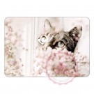 Katze hinter zarten Blumen
